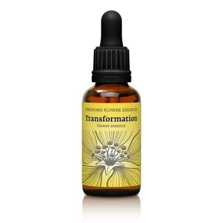 Esencia Floral Transformation de Findhorn en botella de 30 ml. Esencia Floral para Apoyar en Procesos de Transformación