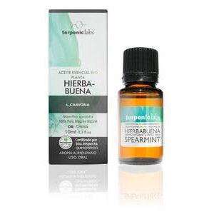 Aurum Wellbeing Aceite Esencial Hierbabuena BIO 10 ml TERPENIC LABS